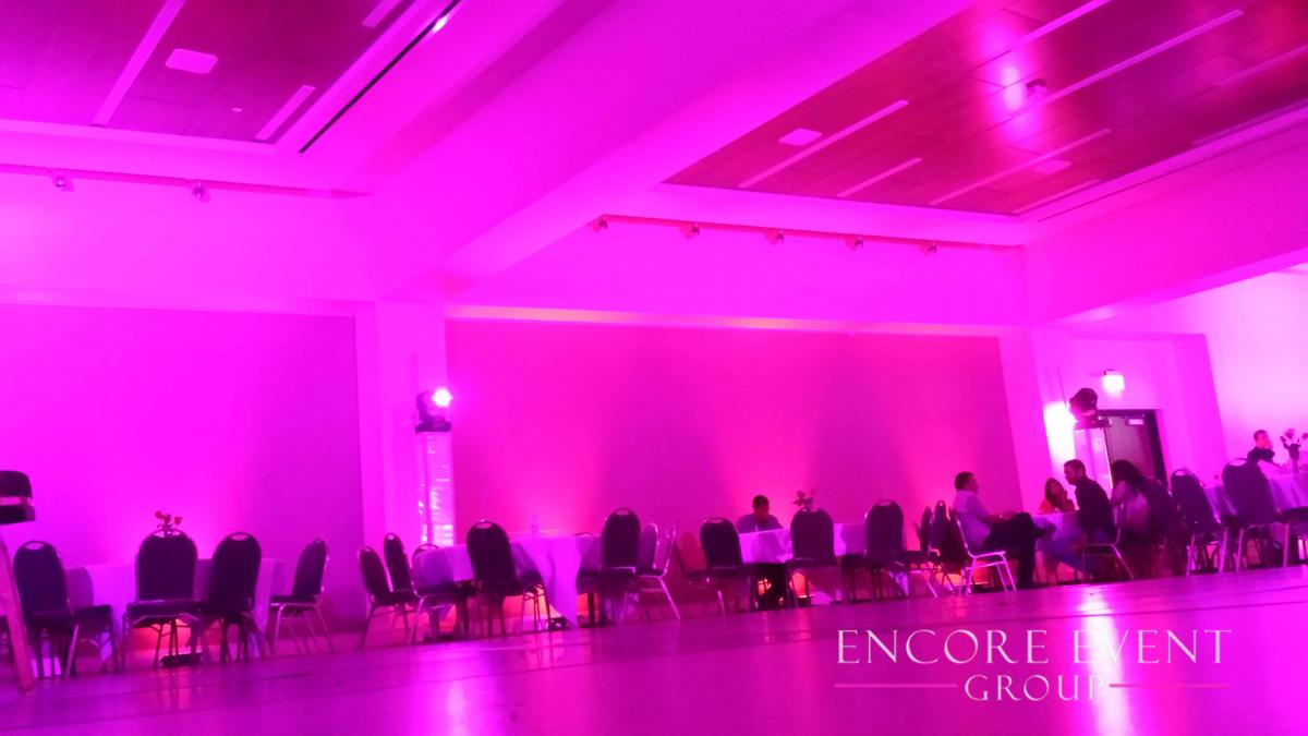 Michigan Uplighting Rental Services Weddings Amp Events